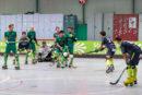 RSC Löwen unterliegen im ersten Rückrundenspiel